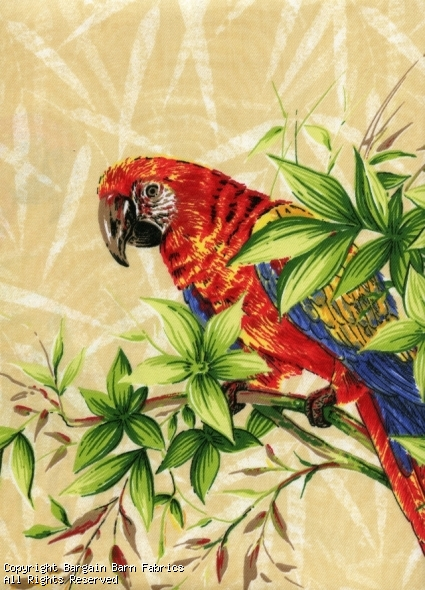 Lively Jungle Macaws
