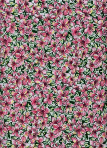 Pink Day Lillies Print