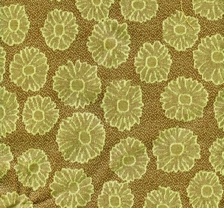 Lime and Chocolate Daisy Print