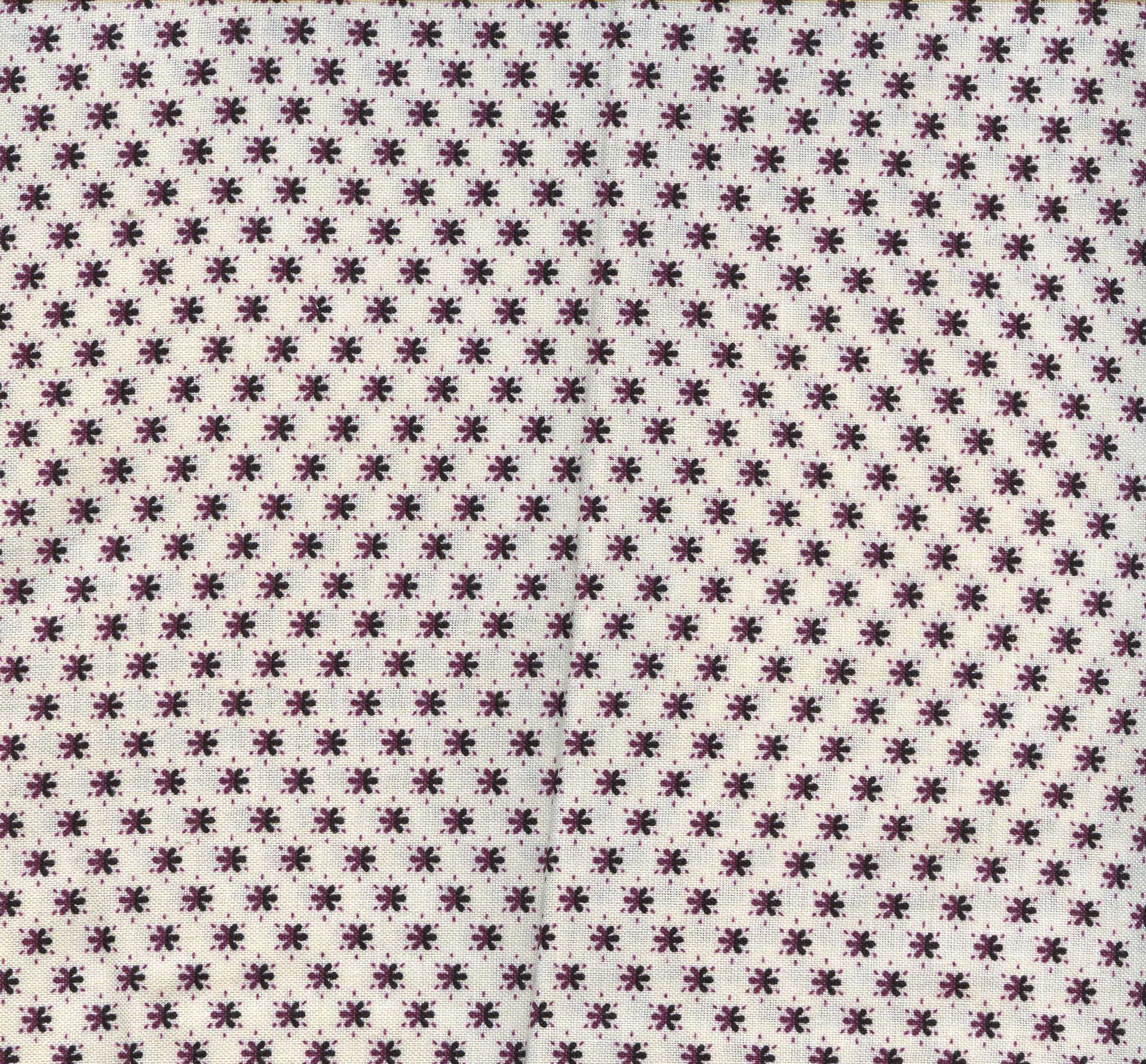 Crazy for Shelburn- Cream with Small Flowers